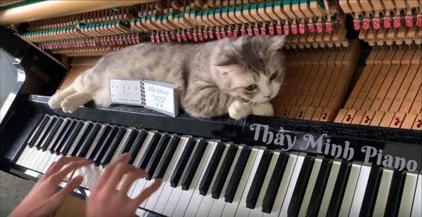 グリッサンド奏法