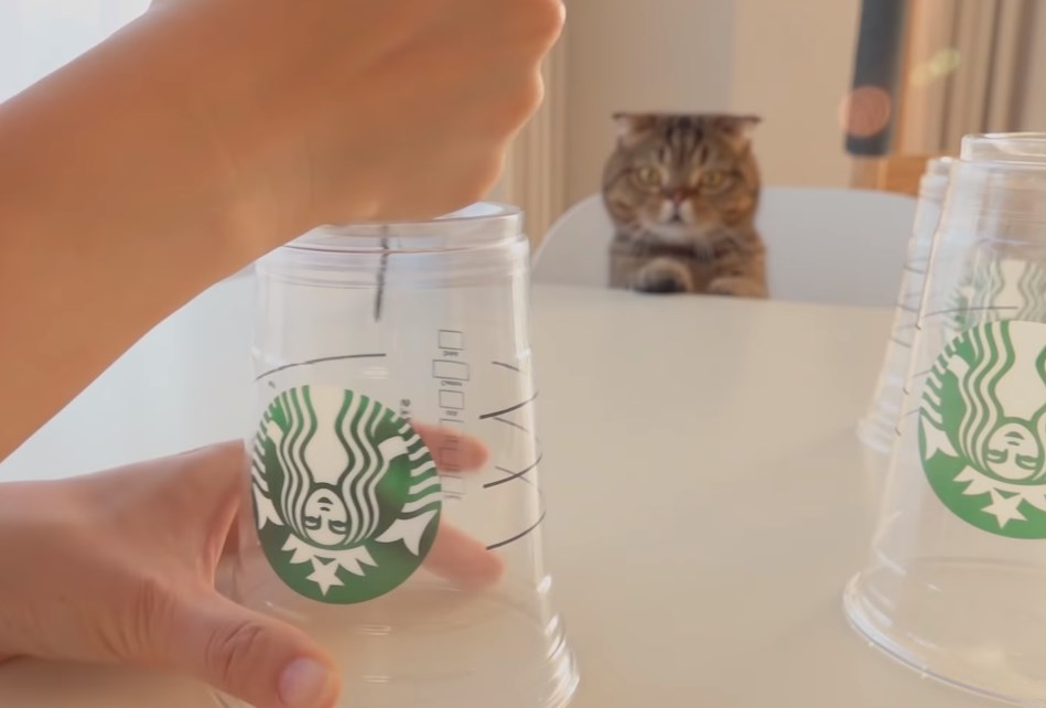 カップに穴をあける