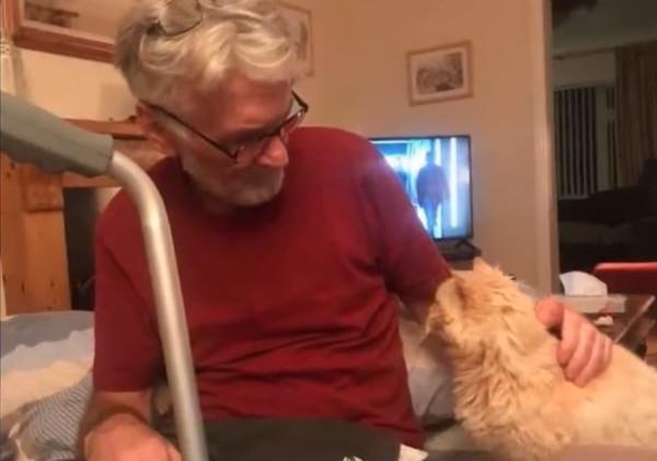 相思相愛な飼い主と猫