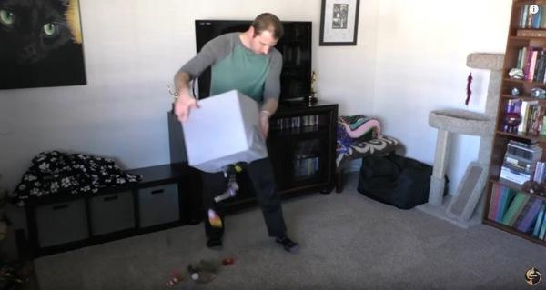 猫のおもちゃを撒く人
