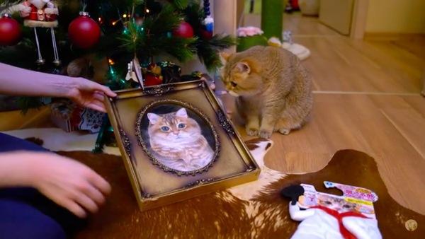 プレゼントを見るホシコ