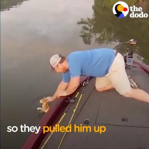 子猫を船にすくい上げる男性