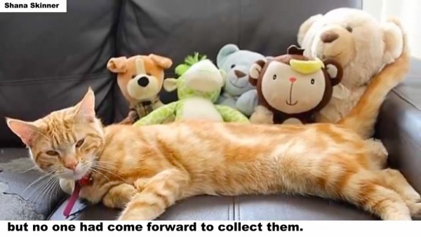 戦利品と猫のムファサとの記念撮影
