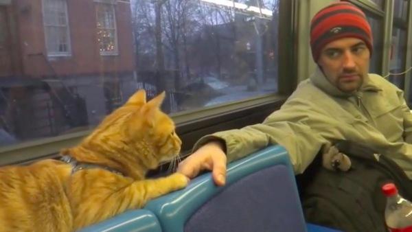 見知らぬ乗客と