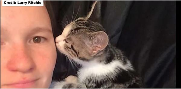男性と子猫のニルヴァーナ