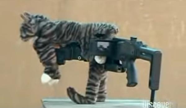 猫のぬいぐるみをつけたコーナー銃