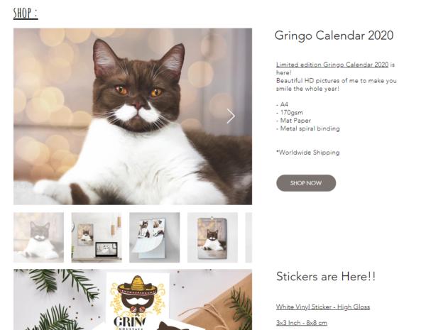 グリンコのホームページ