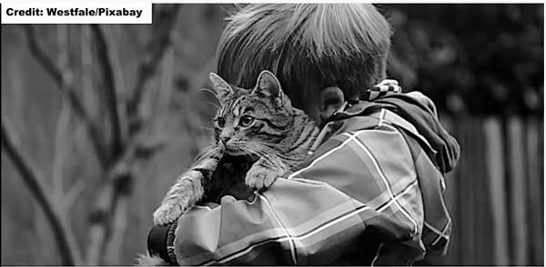 猫を抱きしめる男のこ