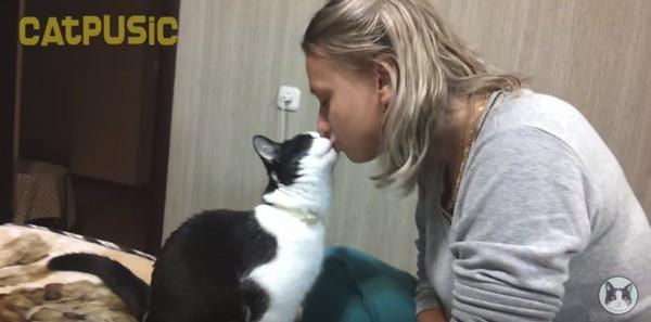 キスしている猫