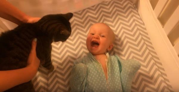 猫を見て笑顔の赤ちゃん
