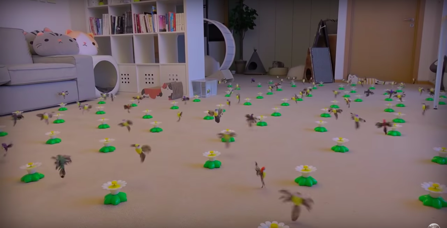 部屋中に置かれたたくさんの鳥のおもちゃ