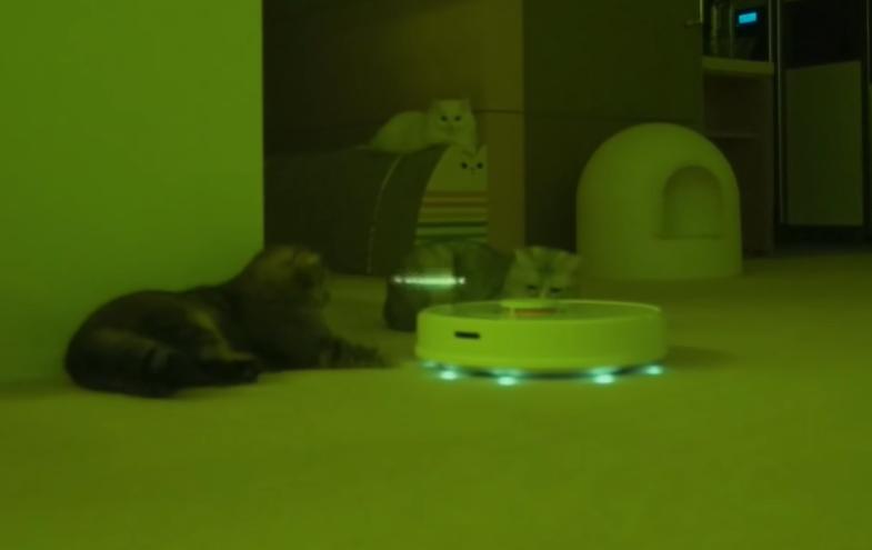 猫星人が降りた猫ルンバ
