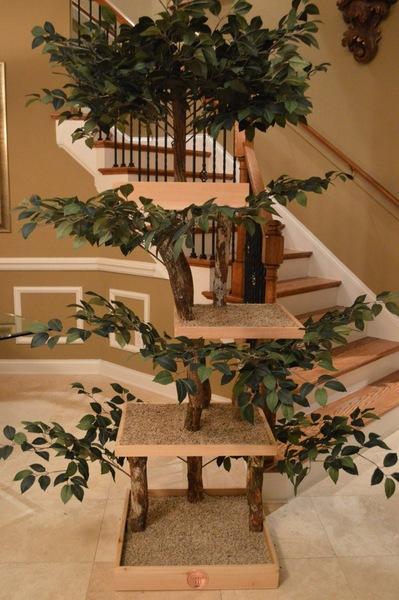 室内に置いたキャットツリー