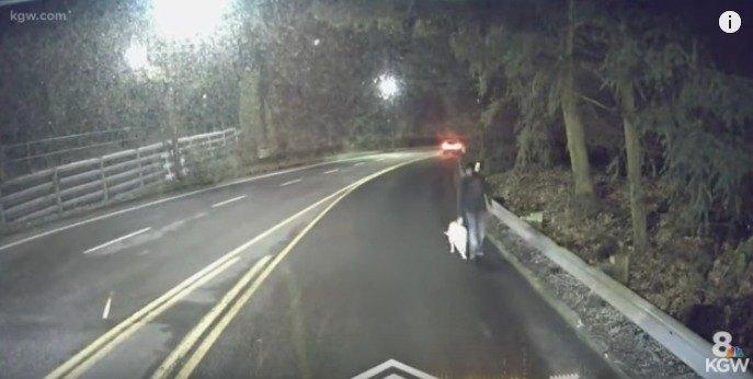道路を歩く男性と犬