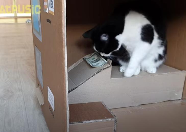 出金機能を搭載した猫ATM