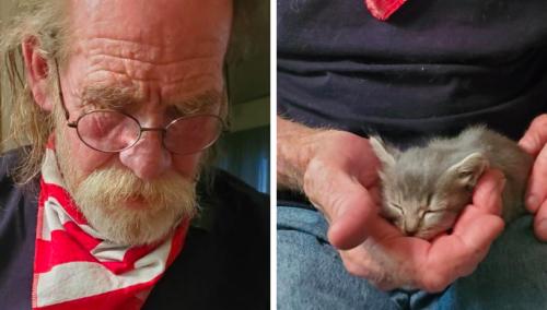 おじいさんと子猫