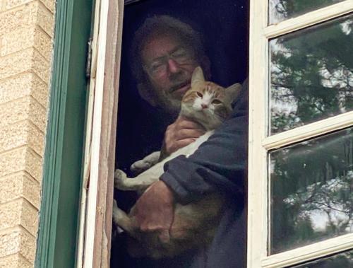 お父さんと猫
