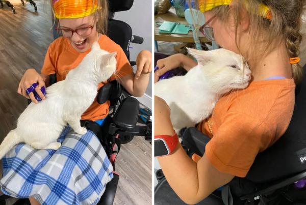 車椅子の少女と猫