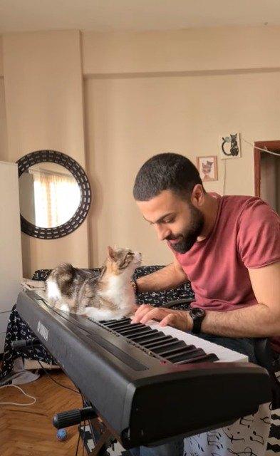 ピアノの音色を聞いてうっとりする猫