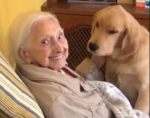 100歳のおばあちゃんと犬