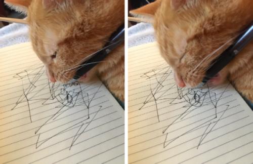 ペンを咥えて文字を書く猫