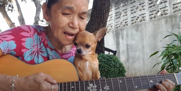 おばあさんとチワワ