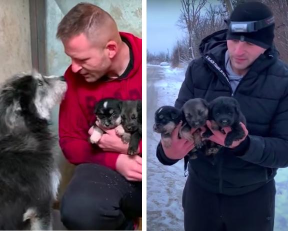 子犬を助けた男性と犬