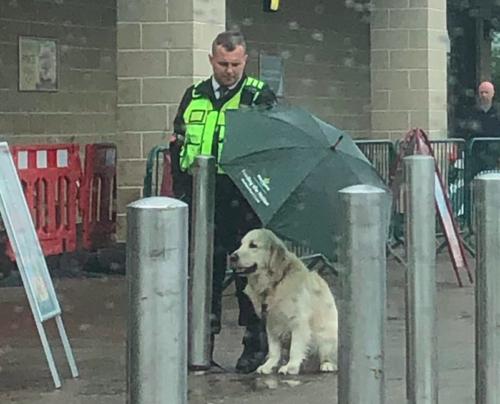 犬に傘を差し出す警備員さん
